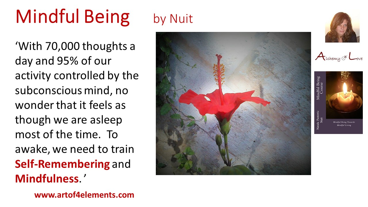 How to meditate quote from Mindful Being by Nuit