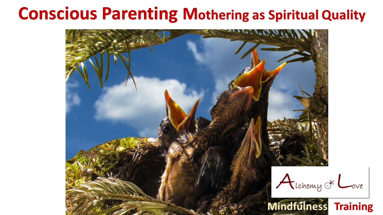 Conscious Parenting Mothering Alchemy of Love Mindfulness Training