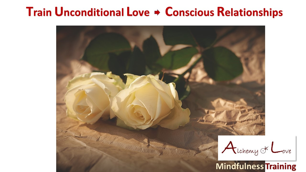 Conscious Relationships: Chemistry of love and how to train unconditional love