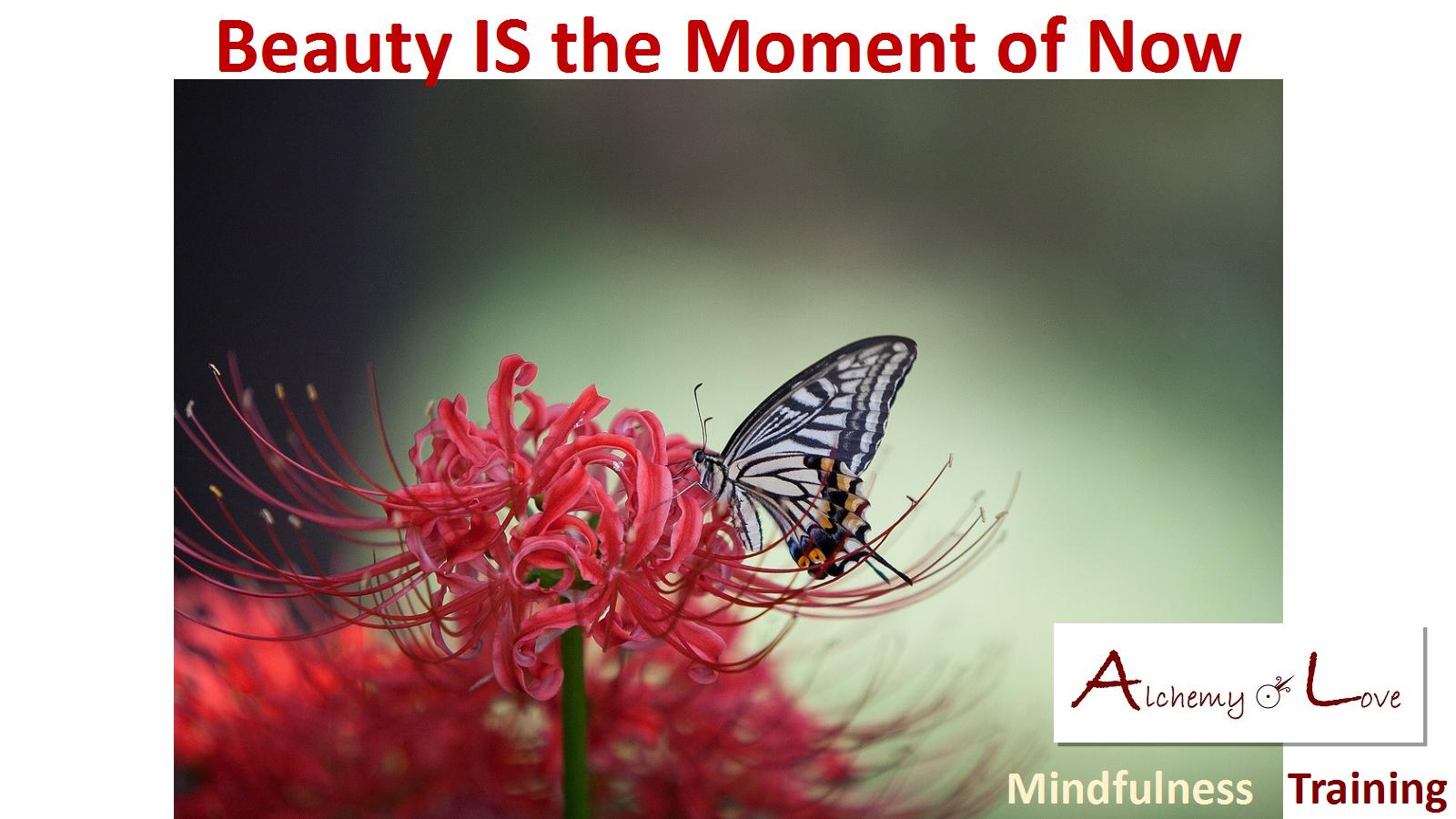 Beauty is the moment of now