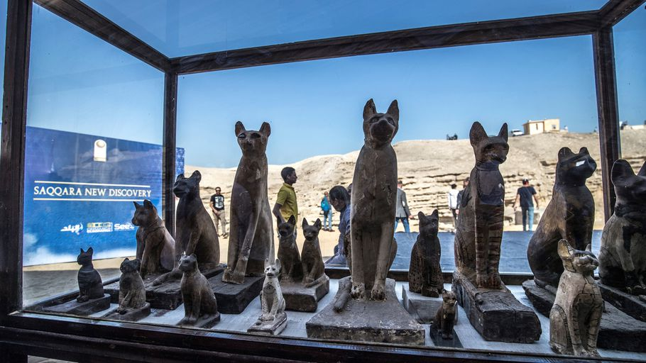 Statuettes of cats exhibited at Saqqarah after the announcement of a new archaeological discovery on November 23 2019