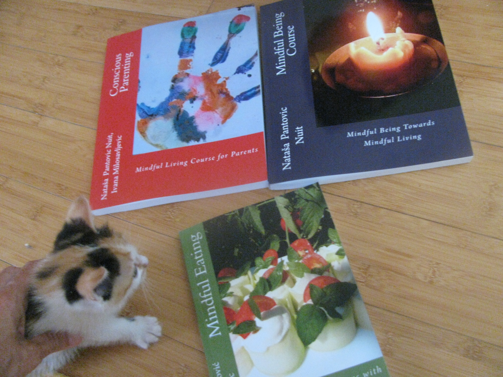Conscious Parenting, Mindful Being and Conscious Eating printed