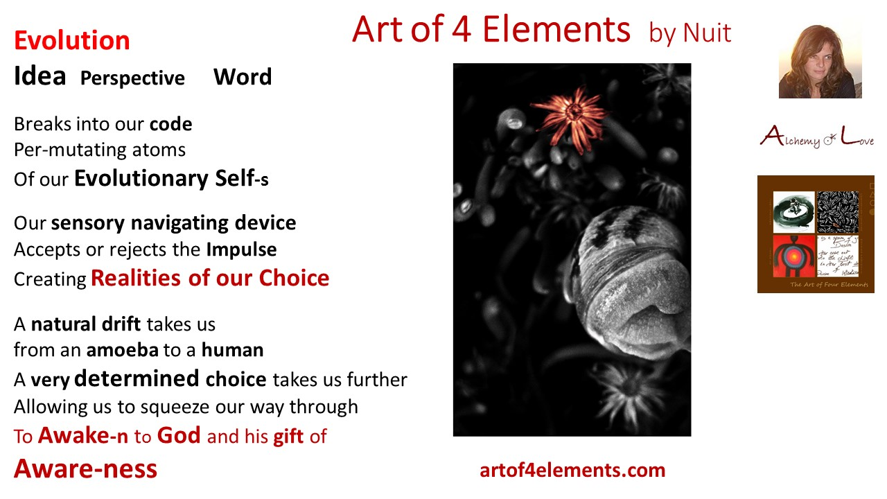 Spiritual poem about spiritual evolution from Art of 4 Elements poetry book by Nuit