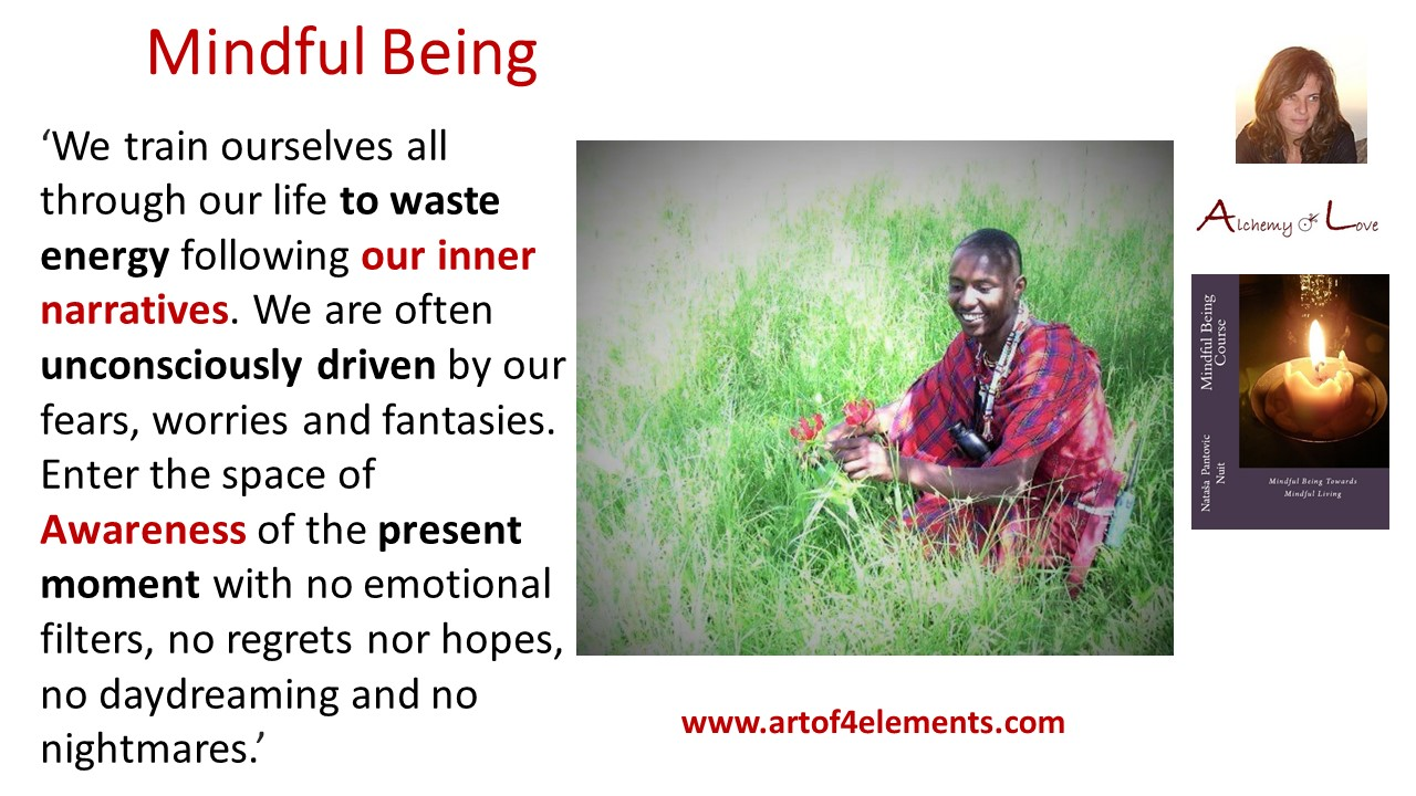 Personal development spiritual growth quote from Mindfulness Training Book: Mindful Being by Nuit