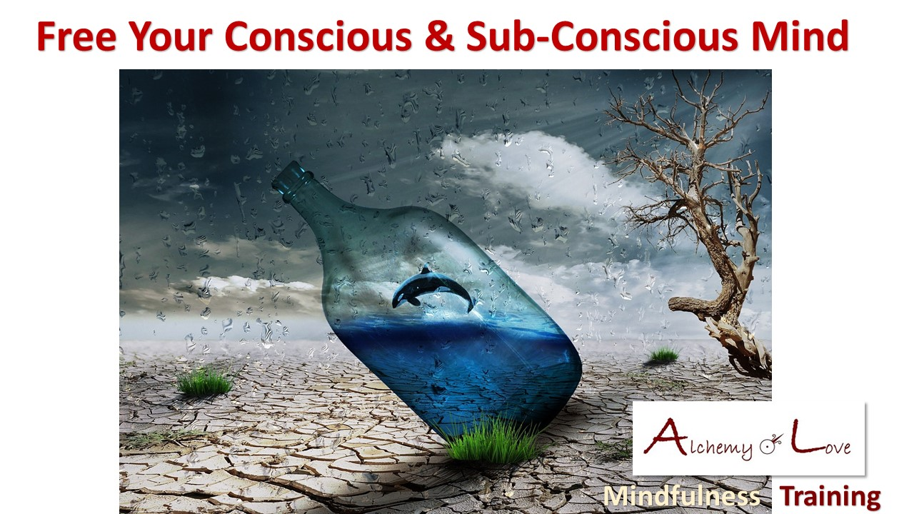 Conscious subconscious mind powers free your mind mindfulness training