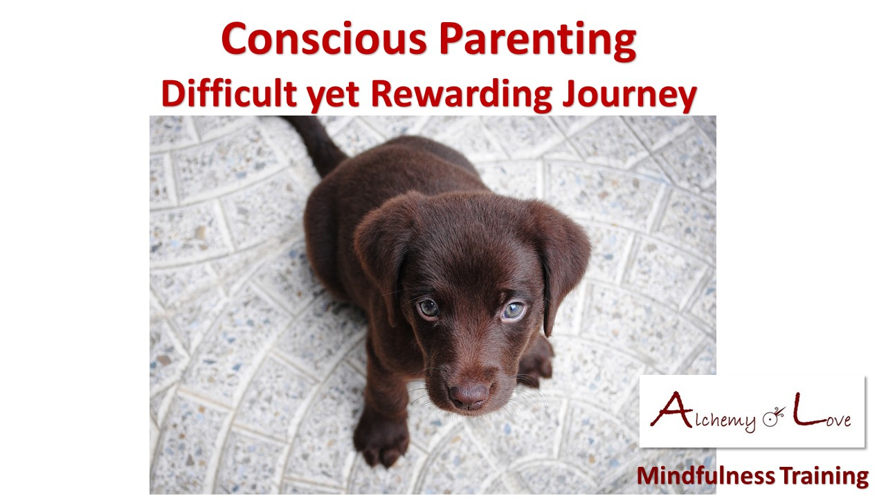 Conscious behaviors and parenting by Natasa Pantovic Nuit