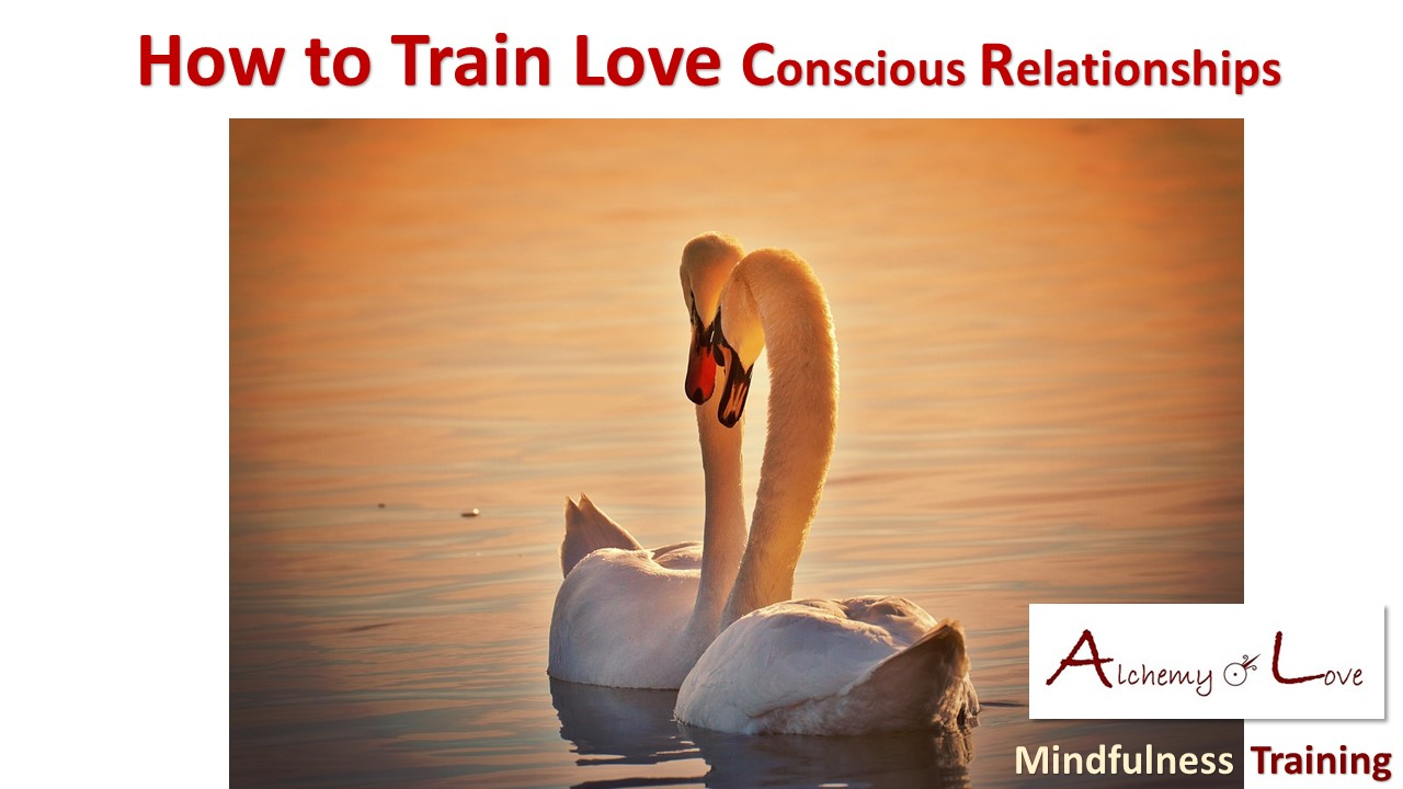 Conscious Relationships Articles