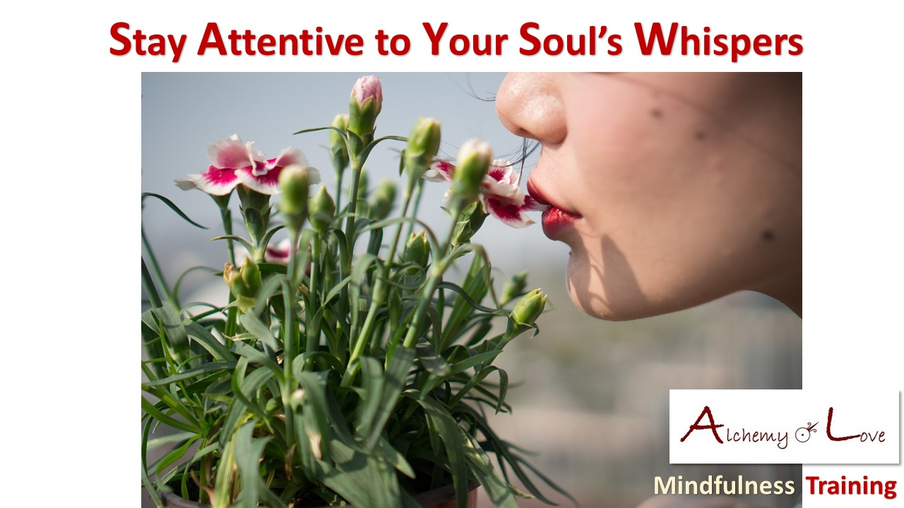 soul whisper mindfulness training alchemy of love by Natasa Pantovic Nuit quote
