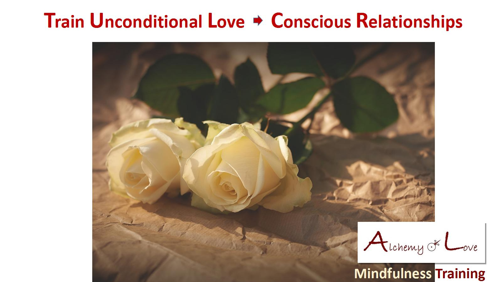 mindfulness gift: train unconditional love