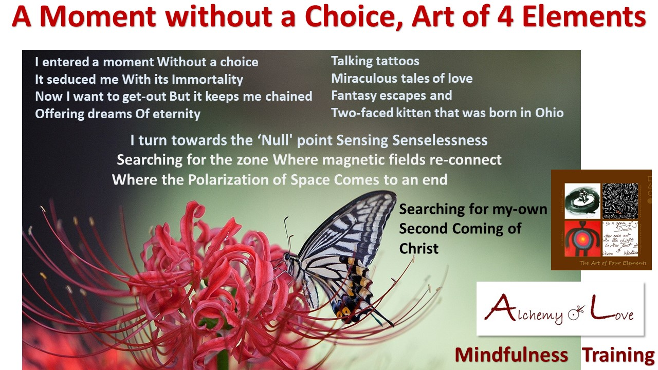 moment without choice poem from Art of 4 Elements by Nuit
