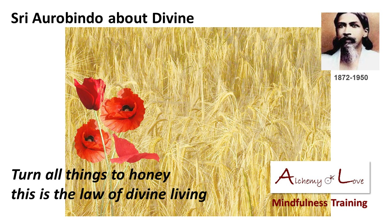 Spiritual Poetry Aurobindo turn all things to honey this is the law of divine living